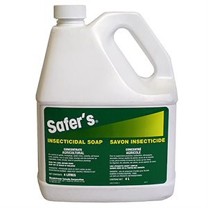 SAFER'S CONCENTRATED INSECTICIDAL SOAP 4L (1)