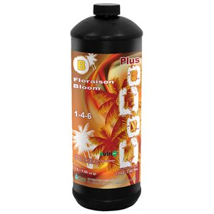 NUTRI+ COCO PLUS NUTRIENT BLOOM B 1 L (1)