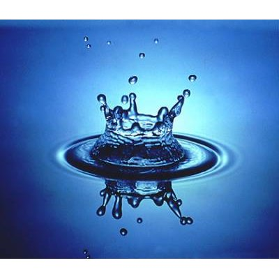 BASIC WATER TESTING SERVICES